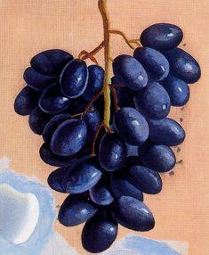 Racimo de uvas- Óleo sobre lienzo. 20,5 x 17 cm. Obra de Maruja Mallo