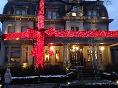 Holiday bow by BCP