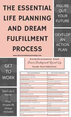 Working through this Life Planning and Goal Setting Process can have a huge impact on your future. Goals Planner, Life Planner, The Essential Life, The Embrace, Future Goals, Life Purpose, Life Motivation, Life Goals, Dream Life