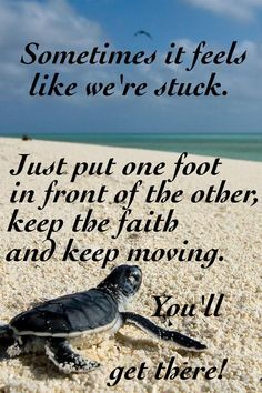 .:)Our brothers and sisters are a source of great encouragement for us to keep going. Don't give up! Better things coming soon.