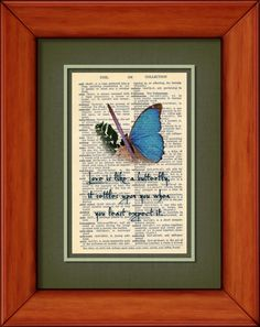 Dictionary Print  Love Is Like A Butterfly  6 3/4 x by PagesOfAges, $7.00