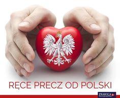 Piotr z Polski ( Poland Culture, Eagle Wallpaper, Visit Poland, Polish, Homeland, History, Twitter, Diy, Poland