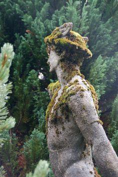 Mercury in the Garden from This Pilgrim's Progress: Sunday Morning Stroll in the Rain