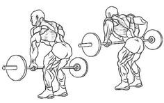 Back - Bent Over Barbell Rows
