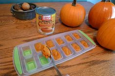 Discover the Health Benefits of Canned Pumpkin for Dogs - Healthy Dog Pumpkin For Puppies, Canned Pumpkin For Dogs, Pumpkin Recipes For Dogs, Dog Pumpkin, Frozen Pumpkin, Pumpkin Dog Treats, Diy Dog Treats, Homemade Dog Treats, Dog Treat Recipes