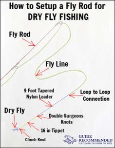 When to Use Split Shot vs Weighted Flies While Fly Fishing - Guide Recommended