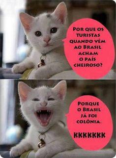 Post  #FALASÉRIO!  : HORA DO TED !