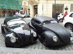 For Being Beetles, They Look Pretty Gangster