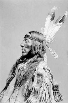 Lean Wolf, 1890