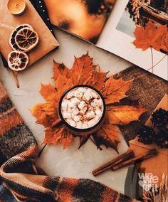 Autumn Witch, Autumn Cozy, Autumn Feeling, Autumn Coffee, Autumn Fall, Winter, Fall Pictures, Fall Photos, Cute Fall Wallpaper
