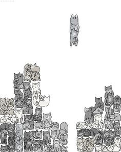 Cat Tetris...why is this not a thing? I would totally play this