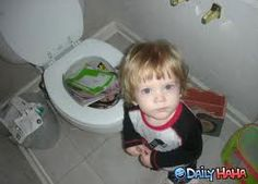 The kid who didn't understand why the toilet wasn't an extra toy box. It happens.