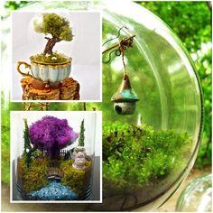 beautiful terrarium designs at AllHome