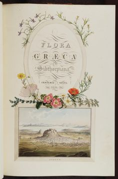 Flora graeca, de John Sibthorp, ill. Ferdinand Bauer