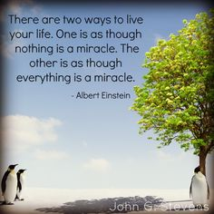 There are two ways to live your life. One is as though nothing is a miracle. The other is as though everything is a miracle. - Albert Einstein #quoteoftheday #instaquote #alberteinstein #miracle #liveyourlife #choose #truth #inspiration