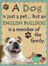 The major breeds of bulldogs are English bulldog, American bulldog, and French bulldog. The bulldog has a broad shoulder which matches with the head. I Love Dogs, Puppy Love, Cute Dogs, Bulldog Quotes, English Bulldog Funny, British Bulldog, Cute Bulldogs, Bulldog Puppies, Bulldog Breeds