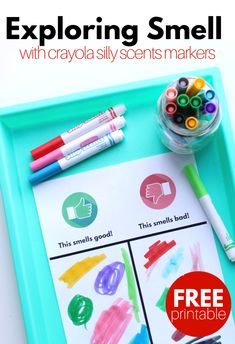 Smell activity - with new Silly Scents markers - no time for flash senses activity for preschool - what a fun way to use stupid scent markers ECE preschool prek 5 sens 5 Senses Preschool, 5 Senses Activities, Rhyming Activities, Preschool Science, Preschool Lessons, Preschool Classroom, Kindergarten Activities, Preschool Alphabet, Science Fun