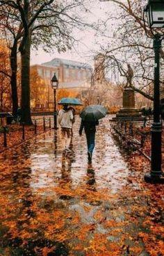 Autumn Wallpaper Hd, Iphone Wallpaper Fall, Halloween Wallpaper Iphone, Rain Photography, Autumn Photography, Landscape Photography, Travel Photography, Autumn Aesthetic, City Aesthetic