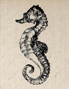 Seahorse Digital Download for Iron on Transfer by PetitePaperie, $1.50