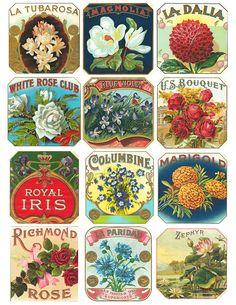 Free Vintage Floral Cigar Labels Collage Sheet,are printable 8.5″ x 11″, 300 dpi hi-res .jpgs.