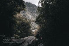 Light - Pinned by Mak Khalaf Shot in New Zealand Franz Josef glacier track. instagram @mchlptrs Landscapes cloudsforestlakelandscapemountainmountainsnew zealandphotophotographytraveltreeswaterwinter by mchlptrs