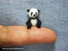 Can you believe your eyes!!! PANDA!