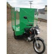 O Triciclo Katuny é ideal para quem procura durabilidade, baixo custo, força e desempenho. Atende as mais diversas necessidades de uso diário. Ele foi desenvolvido a partir da moto Honda 150cc.