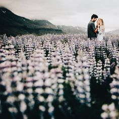 Couples session in field of purple flowers posing ideas