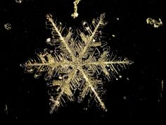 Individual snowflakes are difficult to photograph because they melt quickly unless it is extremely cold Their delicate crystal shapes usually form a hexagon pattern and no two snowflakes are ever identical or alike