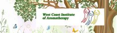 Learn about Aromatherapy | West Coast Institute of AromatherapyWest Coast Institute of Aromatherapy | Aromatherapy Courses