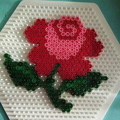 Rose hama beads by maysongbird