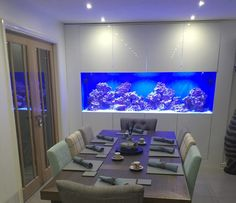 Home Room Design, Living Room Designs, House Design, Fish Tank Wall, Fish Tanks, Modern Fish Tank, Home Aquarium Fish, Aquarium In Wall, Casa Magna