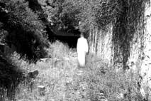 Ireland has a rich history of sightings of ghosts and spirits all around the country.