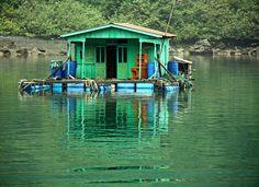 floating green house...    Ha Long Bay, Vietnam
