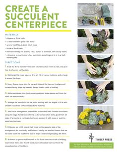 A gorgeous, DIY succulent centerpiece that is perfect for your holiday table!