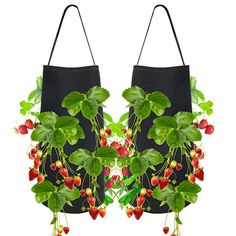 Pri Gardens Hanging Strawberry Planter for Strawberry Bare Root Plants (Roots not Included) Felt Material 2 Pack - Modern