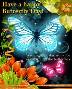 Send someone you know this special Butterfly Day ecard. Free online Happy Butterfly Card ecards on Butterfly Day Good Day Gif, Good Morning Beautiful Quotes, Good Morning Quotes, Butterfly Quotes, Butterfly Images, Butterfly Cards, Happy Mothers Day Wishes, Happy Birthday Wishes Images, Birthday Greetings