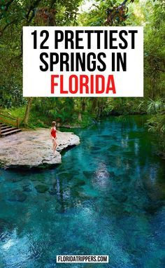 Florida Vacation Spots, Places In Florida, Visit Florida, Florida Living, Florida Travel, Florida Beaches, Vacation Trips, Day Trips, Travel Usa