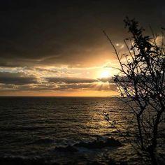 Instagram Repost : #Repost+Thanks!  @anna_her.xa ・・・ a v u i ... #bondia #morning #sunrise #mati #strong #gym #love #smile #enjoy #carpediem #creu #sea #reflexe #stunning #beautiful #capture #moment #palamosonline #igerspalamos #costabrava #elmeupetit_pais #palamos #palamós @palamosonline