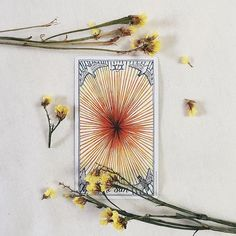 vitality | the sun from the wild unknown tarot via @hedgewitching