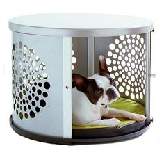 I pinned this Kaleidoscope Pet Den from the Creature Comforts event at Joss and Main!