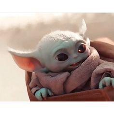 Yoda Pictures, Yoda Images, Star Wars Pictures, Yoda Funny, Yoda Meme, Yoda Drawing, Mega Anime, Baby Animals, Cute Animals