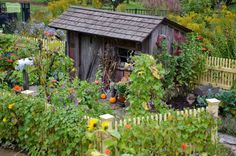 The perfect little garden shed.