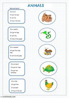 Learning English For Kids, Teaching English Grammar, English Worksheets For Kids, English Lessons For Kids, Kids English, English Reading, English Activities, Kids Learning Activities, Learn English
