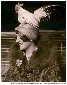"""theshinyboogie: """"Stylish Mae Vavrea tops off her turban with a black-tailed white Japanese bantam rooster at the Chicago Poultry and Pet Show in National Geographic, February 2011 Antique Photos, Vintage Photographs, Vintage Images, Old Pictures, Old Photos, Chicken Hats, Funny Chicken, Chicken Humor, Film Movie"""