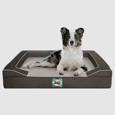 Sealy Dog Bed with Quad Layer Technology       >>>>> Buy it now    http://amzn.to/2bXyAGN