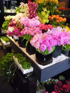 Flower shop display Flower Market, Flower Shops, Fresh Flowers, Spring Flowers, Beautiful Flowers, Colorful Flowers, Beautiful Life, Le Jolie, Jolie Fleur
