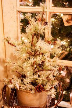 Vintage Christmas Tree by Cynthia Woods