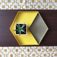 Make a nice tray following this step by step tutorial.