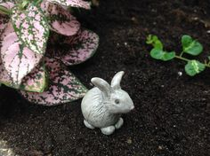 Bring woodland charm to your mini-garden with this too-cute decorative bunny figurine featuring dainty details and a rustic design. NOT A TOY – Miniatures are small items that pose potential choking h